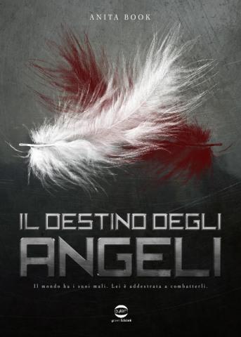 Il destino degli Angeli di Anita Book